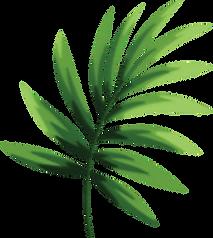 DA-Website-Leaf_edited.png