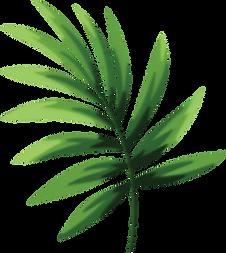 DA-Website-Leaf.png