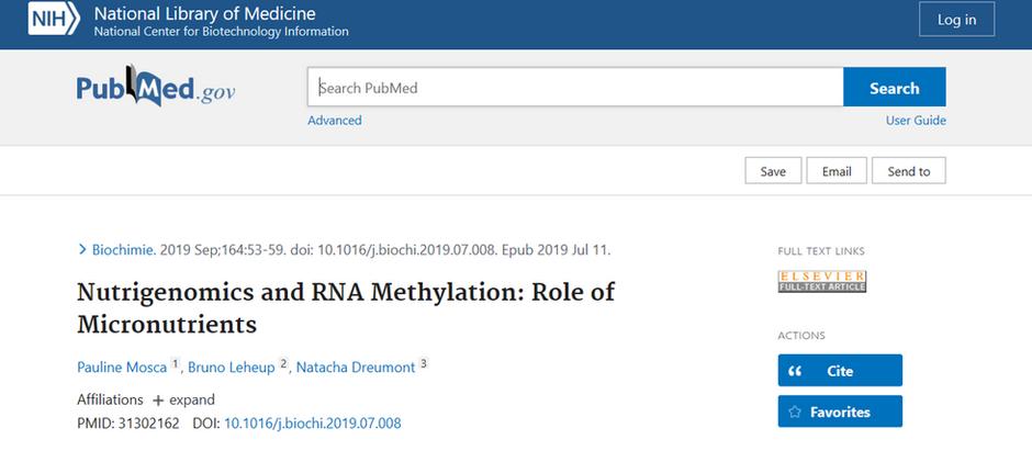 El papel de los micronutrientes en la metilación del ARN humano