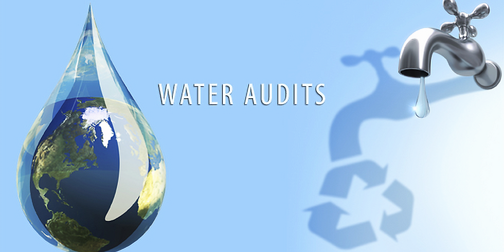 Water Audit and Conservation in the Sustainability of Businesses