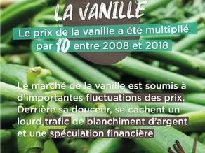 Explosions des prix, blanchiment d'argent… que cache la filière de la vanille ?