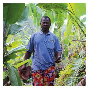 Reboiser à grande échelle pour lutter contre la déforestation de la presqu'île de Masoala