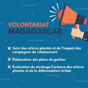 [Ouvert] Volontariat - Appui au suivi des plantations et de la mesure d'impact