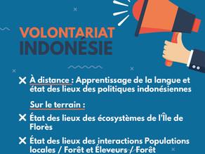 [Pourvu] Volontariat - Diagnostic forestier : Étude du contexte local