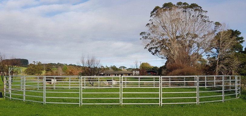 """""""The round pen is my boardroom, my meeting place and my second home"""" - Monty Roberts"""