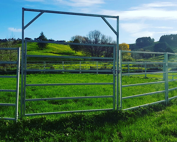 Cj Horse Penz panel and gates