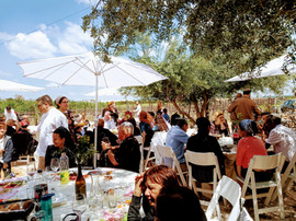 An event at the Maresha Winery