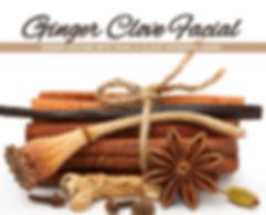 Ginger Clove Facial, Fall Facial, Anti-aging facial,  facial, fall spa special, skin script