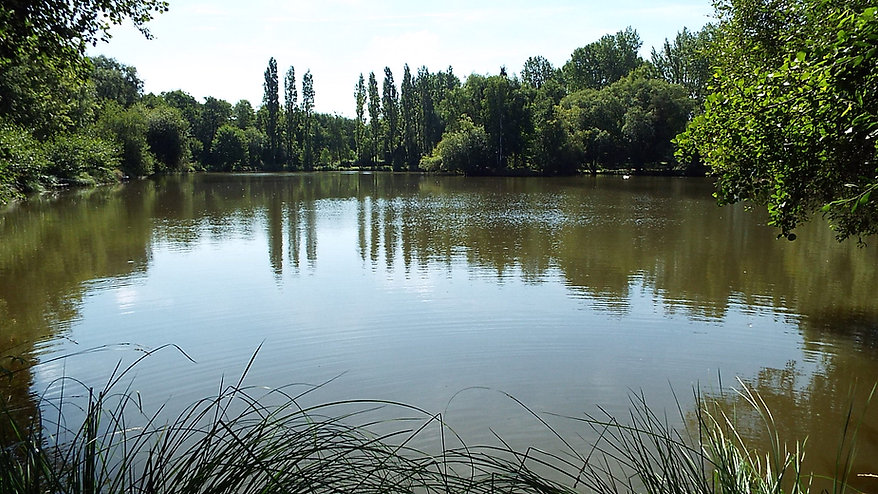 Peaceful, Tranquil, Exclusive Carp Fishing Holidays in France | Les Burons