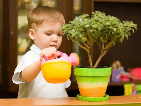 Crianças são como plantas