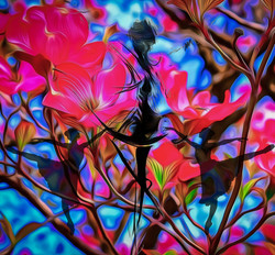 Rapsody of Colors