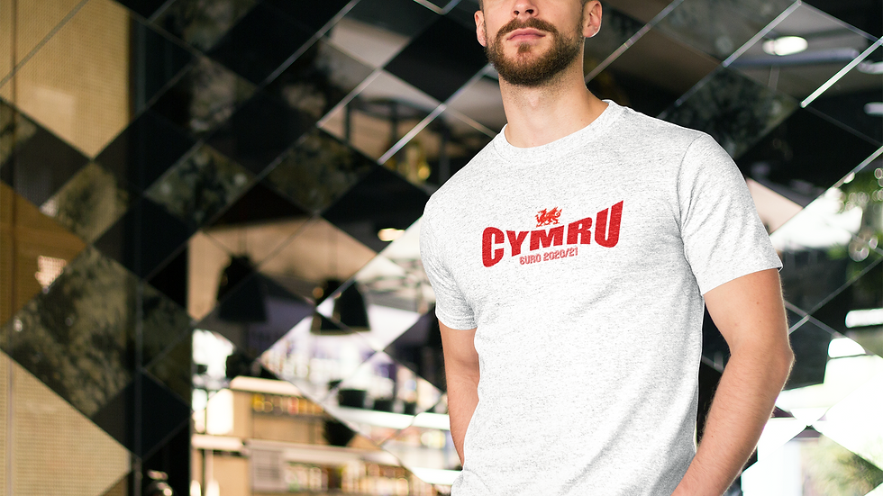 Wales Cymru Euros T-shirt