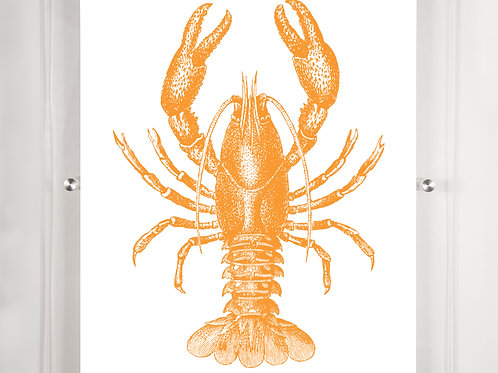 MB Lobster - Mango