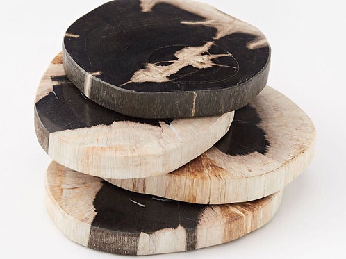 Petrified Wood Coaster - Set/4