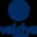 Logo_Valdys_Groupe_Q.png