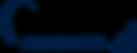 Handikite-logo_w.png