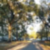 Sunny Oaks Community RV