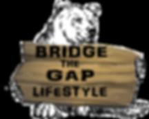 Bridge the gap logo newest most used_edi