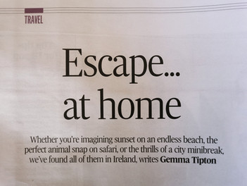 We're in The Irish Times!