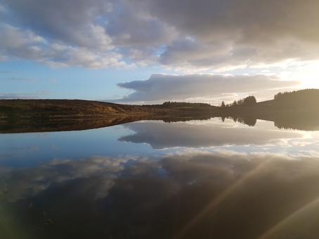 Still Water Reflections