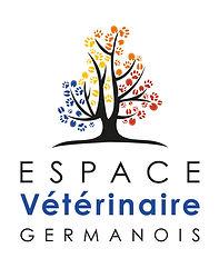 Espace germanois_logotype_Web_RVB.jpg