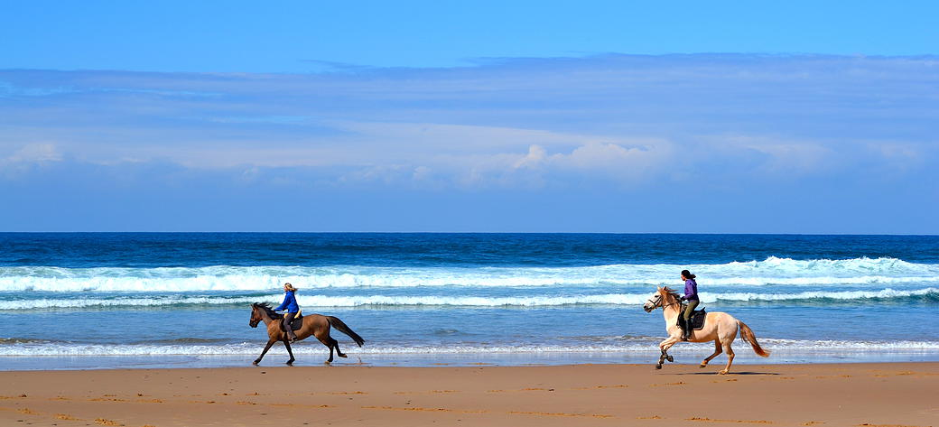 Horseback riding in the Algarve