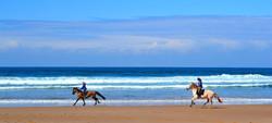 Horseback riding in the Algarve