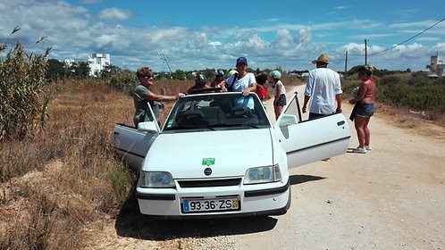 Half Day  Algarve  Tour by Convertible