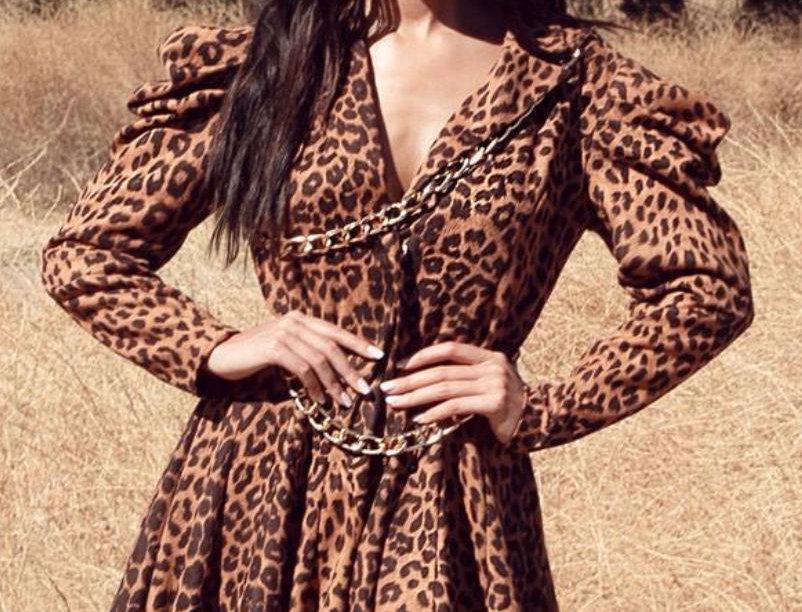 Leopard Chic Mini Dress