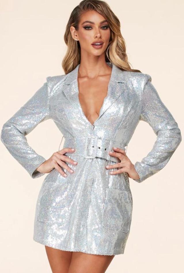 Silver Dress/Coat