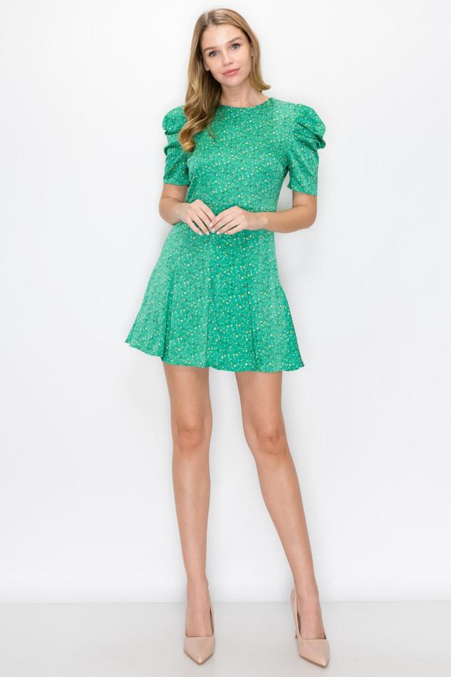 Flowers Green Dress