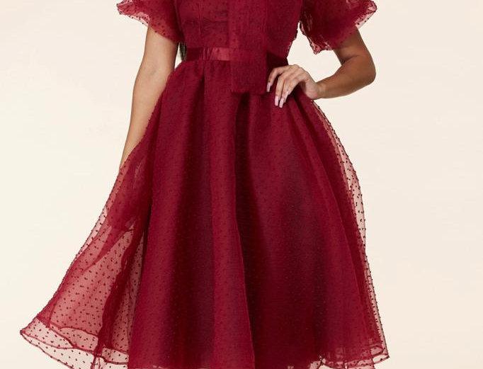 Burgandy Gauze Dress