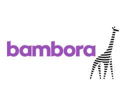 bambora-logo-partner.jpg