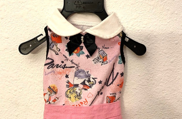 Pawsome Threads for the Pampered Pet..