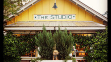 Seas the day at The Studio Gallery in Grayton Beach, Florida...