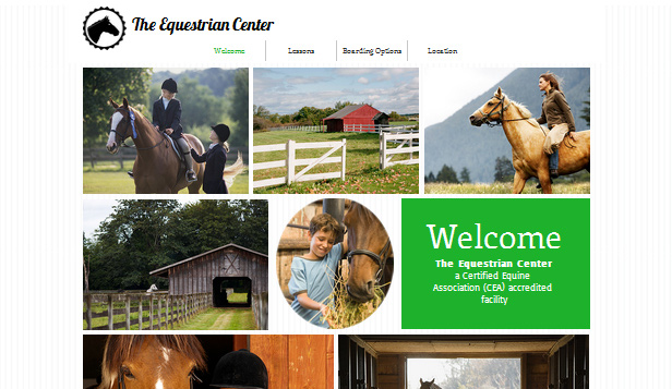 Sport & Recreation website templates – Equestrian Center