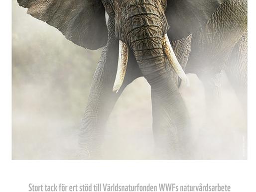 ECO stödjer WWF 2018