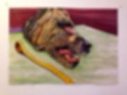 julien brunet de runz, artiste, art contemporain, dessin, drawing, oil painting,