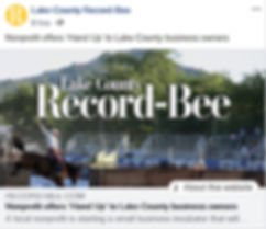 Record Bee Hands Up article ss.jpg