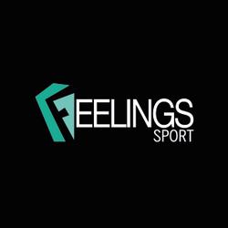 FOURN 2019 - FEELINGS_Plan de travail 1.