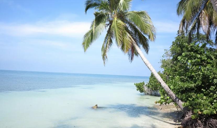 isla del encanto 5.webp