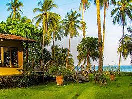 Isla-gorgona-imagen-2..jpg