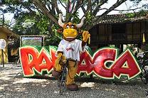 PANACA.jpg
