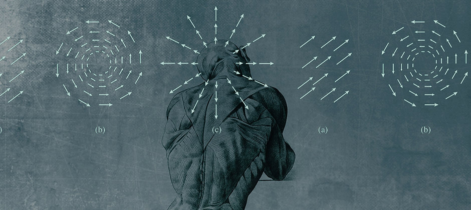 anatomy 3.jpg