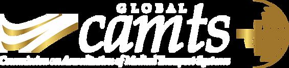 GlobalwhitelogowebAsset 2_2x.png