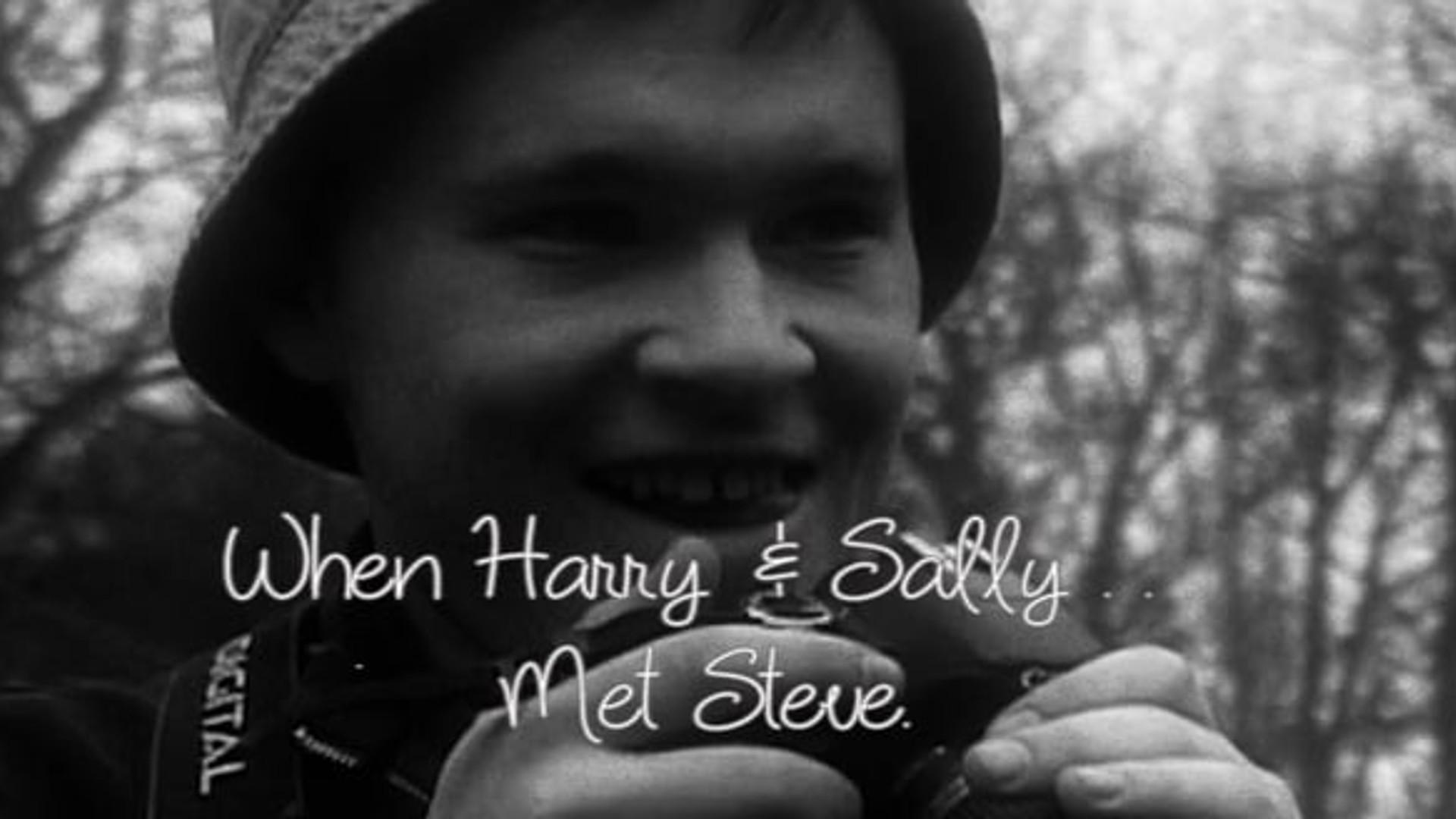 When Harry & Sally Met Steve