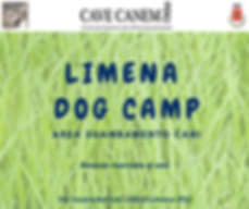 Area Dog Camp.png