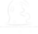 Logo_Fabchap_BLANC_SANS WEB.png