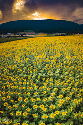 Coucher de soleil sur la montagne de Boudry