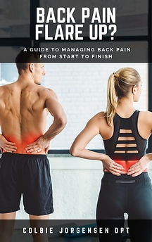 Back pain book design.png